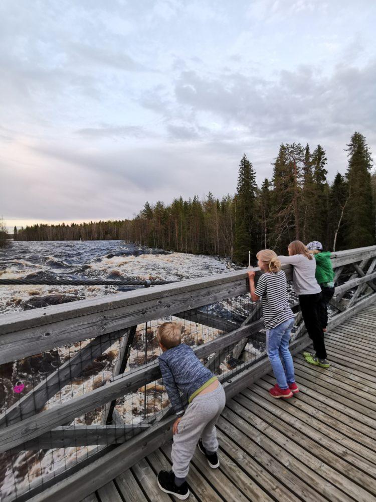 Lapset katselevat sillan kaiteen yli kuohuvaa jokea.